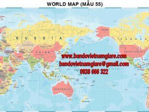Bản đồ Thế Giới khổ lớn mẫu 55
